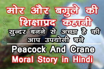 Peacock And Crane Motivational Moral Story in Hindi , Moral Story in Hindi , Hindi Story , moral stories in hindi How To Hide Facebook Profile From Search Engines in Hindi How To Hide Facebook Profile From Search Engines in Hindi Peacock And Crane Motivational Moral Story in Hindi
